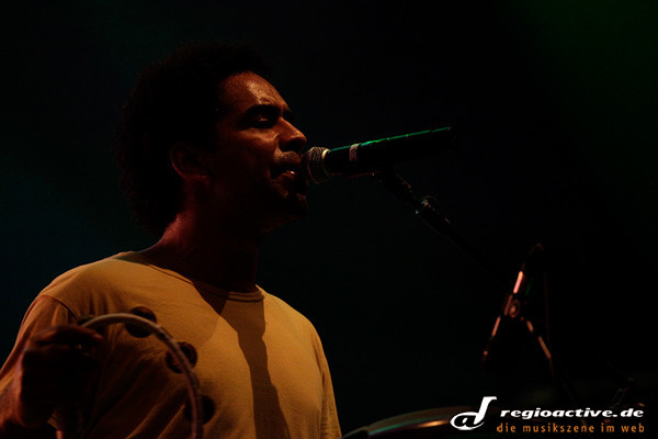 - Fotos: The Black Seeds live beim Sound of the Forest 2012